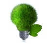 Think green, be efficient 2013