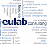 eulab consulting