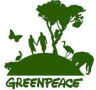 Greenpeace International internship